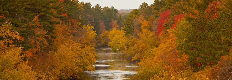 "07DEC2012<br /> <br /> No Return<br /> <br /> Taking a slow boat down the Eau Claire River, that white dot in the trees in the distance is a Bald Eagle, gone by the time I got the big lens out. Took this Image from an overpass shortly after the river flows over the Lake Eau Claire dam.<br /> <br /> Scouting the river from this high viewpoint a black bear careened across the river in a full run.....oddly enough the Black Bear Lodge sits within a hundred yards of the shallows where the bear crossed....things that make you go hummmmm!<br /> <br /> Thanks for your comments on the my image ""Shiny Shores"" yesterday.... The Steak Pit Restaurant sits on a hill overlooking Lake Superior and the Washburn Marina....watching the beautiful sunset unfold before our eyes I went out during dinner and took some great shots of the marina. My image ""Washburn Sunset"" came in at number thirty nine in my most popular image's.  Most nights on our trips we sit down at the dinner table and try to figure out what went wrong that day and which direction to go in the morning.<br /> <br /> Your comments help me get better, thanks for leaving one today."