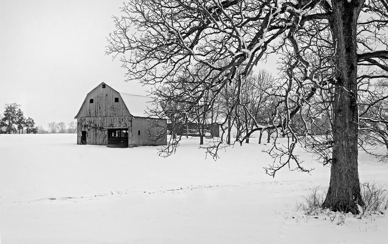 The snow we got over the weekend was absolutely beautiful and a record breaker. The roads weren't that bad where I live and so I got out in the middle of it  all and drove along some country roads. I have driven by this old barn and tree many times and finally got the shot I was hoping for. I used OnOne Perfect B&W plugin to convert to black and white. 3.25.13