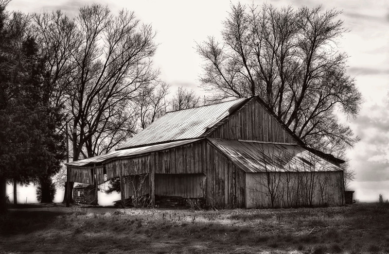 I processed this image with OnOne software Perfect B&W. It was kind of a bleak day, bare trees so I thought black and white would work. Best viewed in larger sizes. 4.10.13