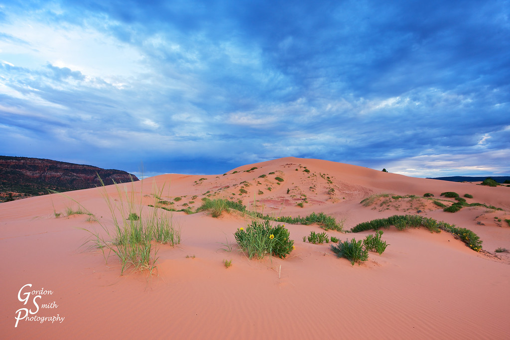Blue Clouds over Coral Pink Sand Dunes