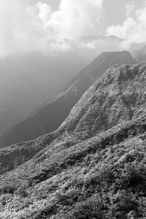 Waihee Ridge Mountains in black and white