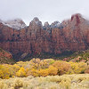 Winter's Arrival<br /> An early snowstorm came of the heels of peak autumn color in Zion national park this year.  Snow and incredible leaves mixed here and there.  At the Tower of the Virgin, snow dusted the top of the cliffs while the cottonwood trees below showed off their colors