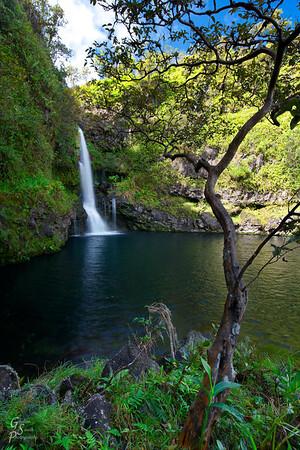 Nemo Falls and Dark Green Pool