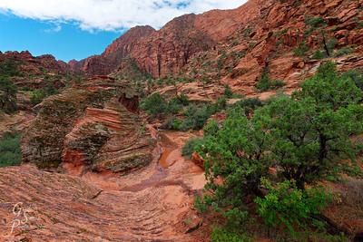 Padre Canyon Scenery