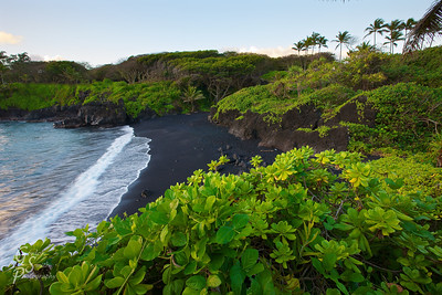 Black Sand Beach, Maui Green palm trees and lush vegetation growing out of the volcanic sand of Waianapanapa State Park framed the black sandy beach at sunrise.