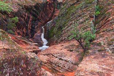 Slot Canyon Oasis-  Padre Canyon waterfall