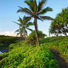 Waianapanapa State Park Trail, Maui<br /> Lovely trail on the black volcanic cliffs of black sand beach.