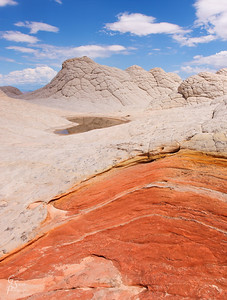 White Pocket:  a mixture of wonderful pool that fill after a summer monsoon rain and the weirdest brain rocks of the whole southwest.  Here, a cut in the top white rock layer reveals a deep orange sandstone layer beneath.