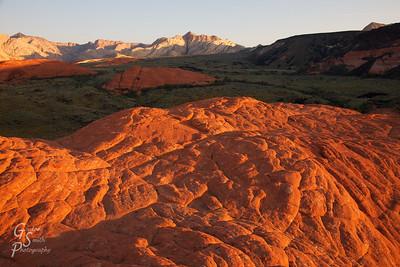 Petrified Dunes at Sunrise Snow Canyon State Park