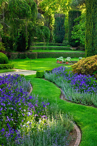 """Enchanted Gardens"" Filoli Gardens Woodside California.  I just love the beams of light breaking through with the lush green grass and the purple flowers (sorry, not sure what they are!) curving around the beds."