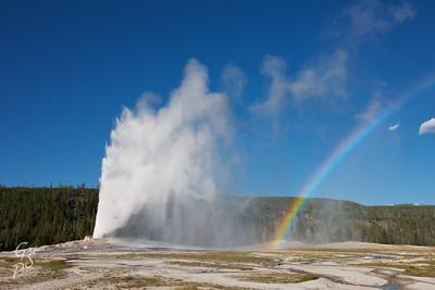 Geyser and Rainbow a late-afternoon eruption