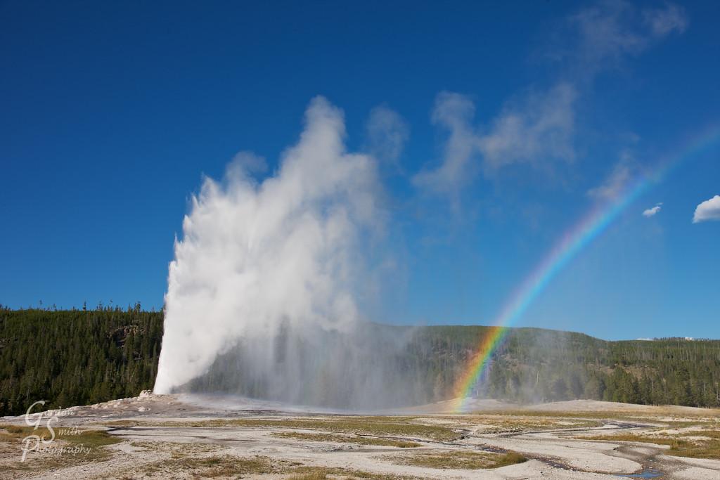 rainbow at old faithful geyser eruption