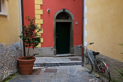 Bicycle, Potted Plant and Door