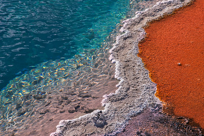 Delicate Boundaries separate the hot spring, the mineral deposits and the glowing bacterial matte.  This wonderful ecosystem at Black Pool in Yellowstone Park is one of the prettiest anywhere.