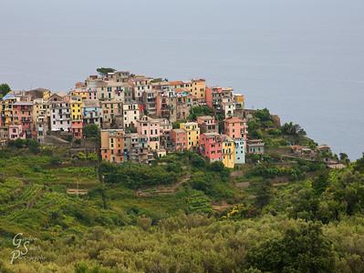 View of Corniglia