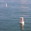 Buoys Going Nowhere