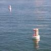 Buoys Going Nowhere