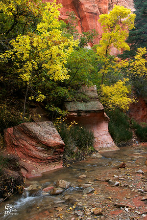 Kanarra Creek Fall Foliage