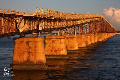 Scoliosis of the Bridge