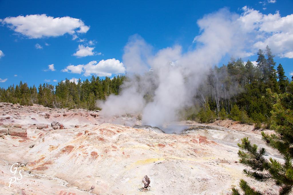norris geyser basin steamboat