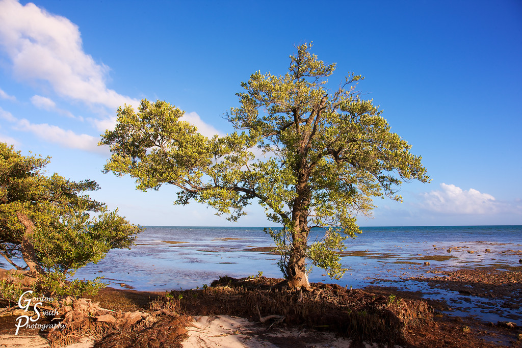 Geiger Beach Boca Chica Key