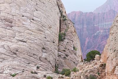 White Cliffs Cut Through