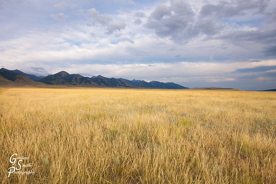 Wide and Big are the Prairies  of Montana