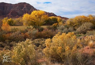 Rockville, Utah