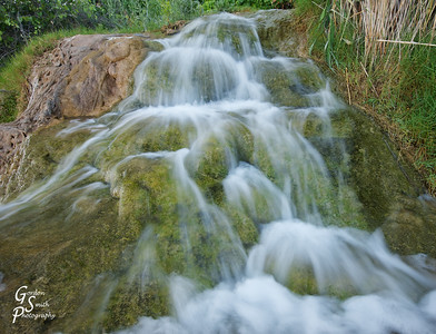 Jamaica Springs