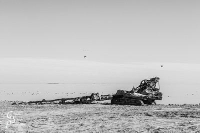 Crane at Bombay Beach