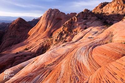 Red Cliffs Desert Reserve Yant Flat