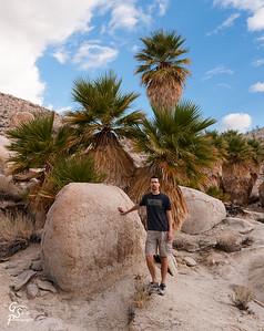 Gordon Smith in Mountain Palm Canyon