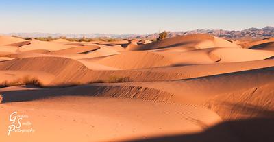 Sand Crests