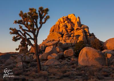 Joshua Tree Boulders of Hidden Valley