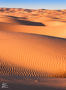 Rolling Ripples and Dunes