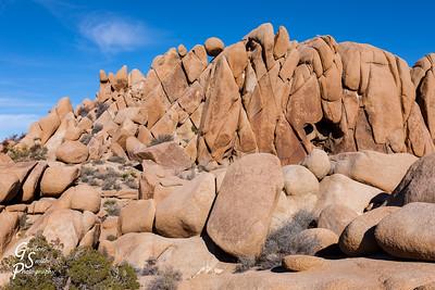 Jumbo Rocks Classic View