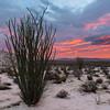 Pink Desert Sunrise