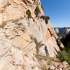 West Rim Trail Chiselled into Rock