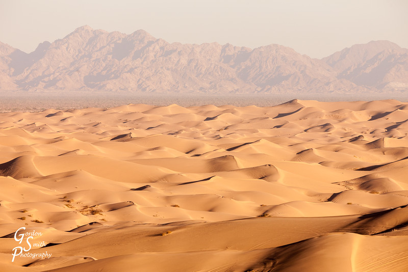 Endless Imperial Sand Dunes