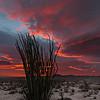 Red Sunrise Anza Borrego