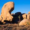 Hidden Valley Rock Spire