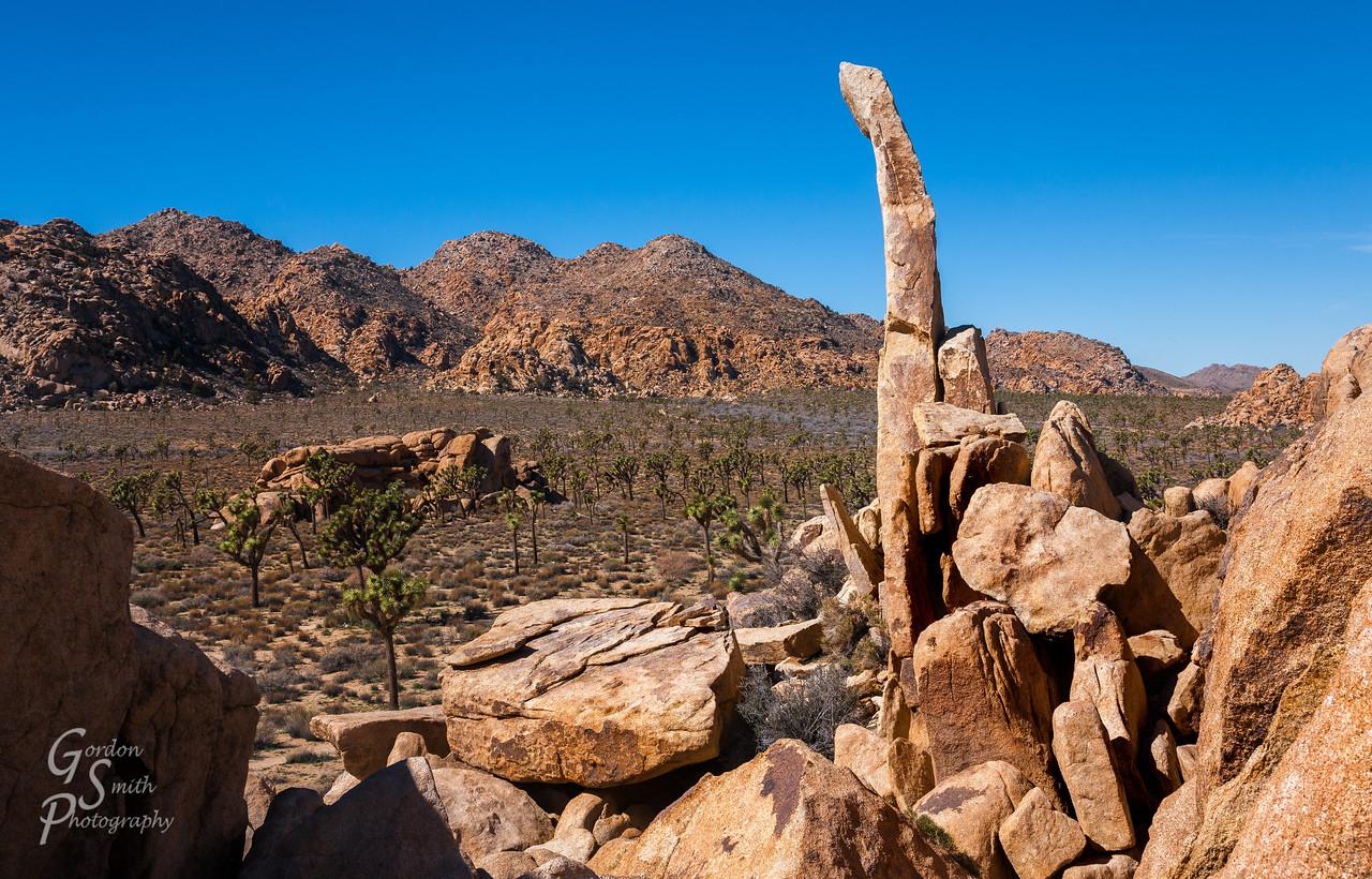 Finger of Hercules in Joshua Tree national park