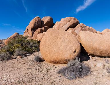 Jumbo Rocks Hike