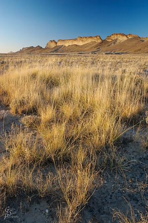Shiprock Grasslands