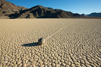 Lonely Traveler