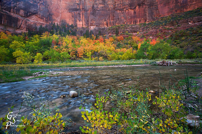Big Bend, Zion
