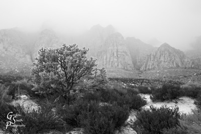 Fog of Kayenta