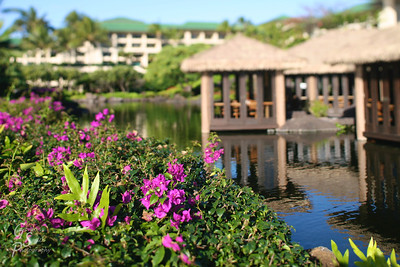 Hyatt in Kauai
