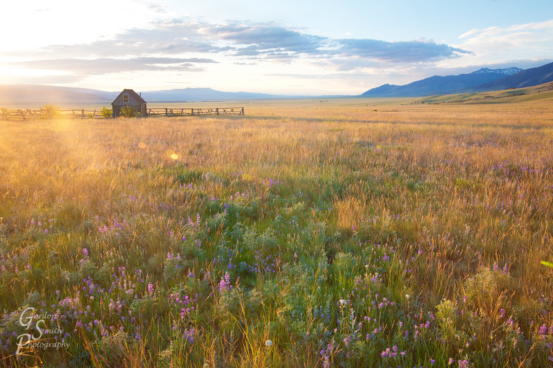 Land of Love<br /> Montana cabin in empty valley Madison valley