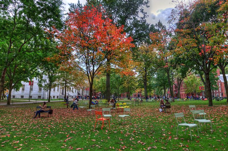 "Harvard Square<br /> <br />  <a href=""http://sillymonkeyphoto.com/2011/11/04/harvard-square/"">http://sillymonkeyphoto.com/2011/11/04/harvard-square/</a>"